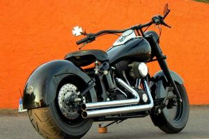 harley_davidson_fat_boy_16.jpg